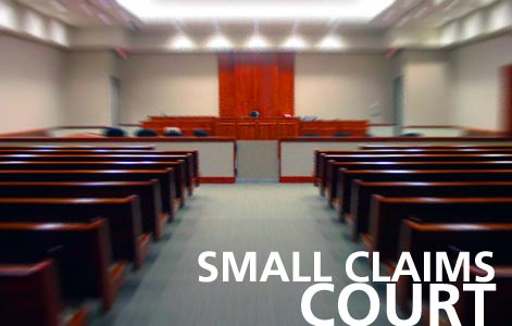 Small Claims Track Witness Statement